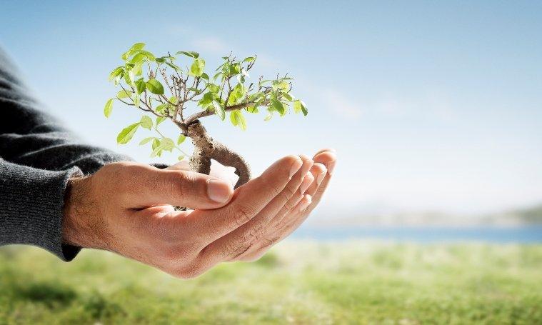 Środowisko przyrodnicze – materialne elementy